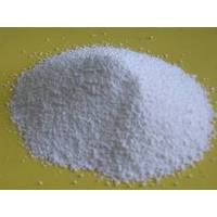 what is ampicillin